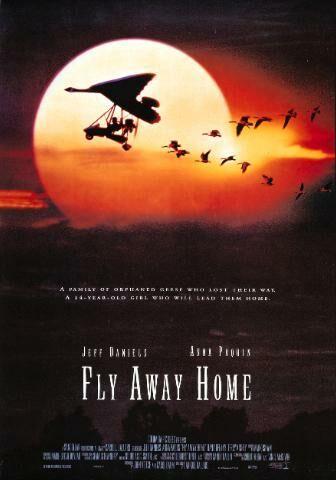 아름다운 비행 (Fly Away Home, 1996)