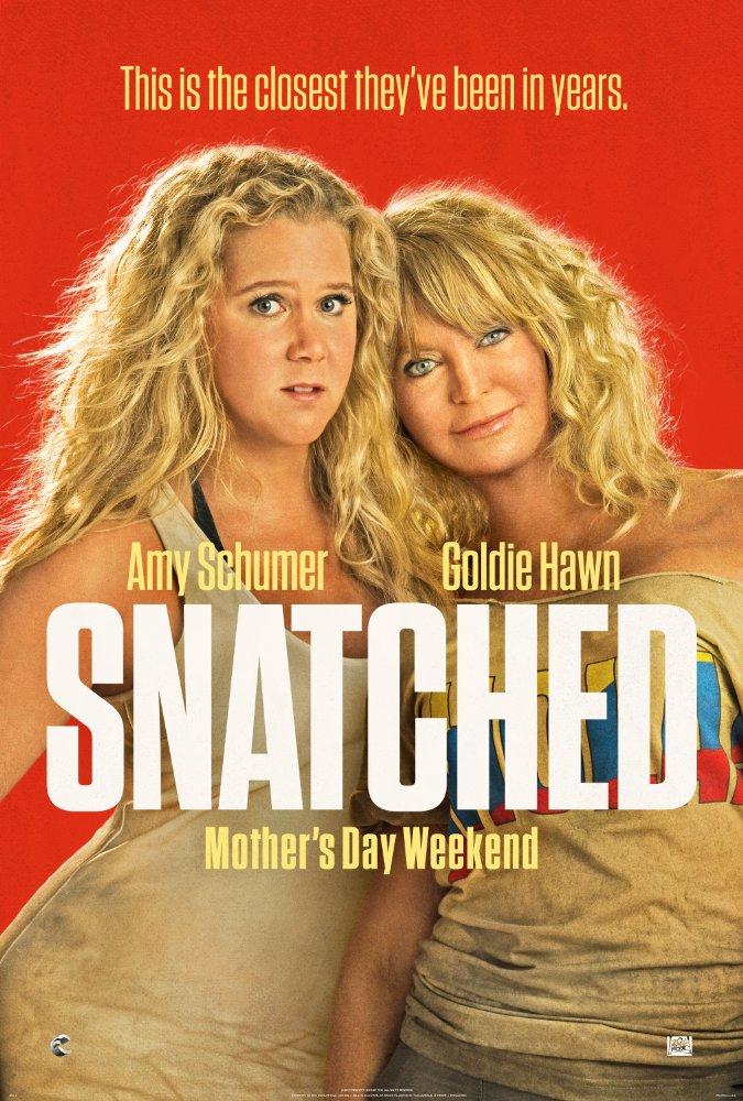 스내치드 (Snatched, 2017)