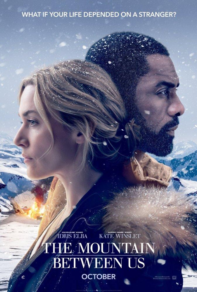 우리 사이의 거대한 산 (The Mountain Between Us, 2017)