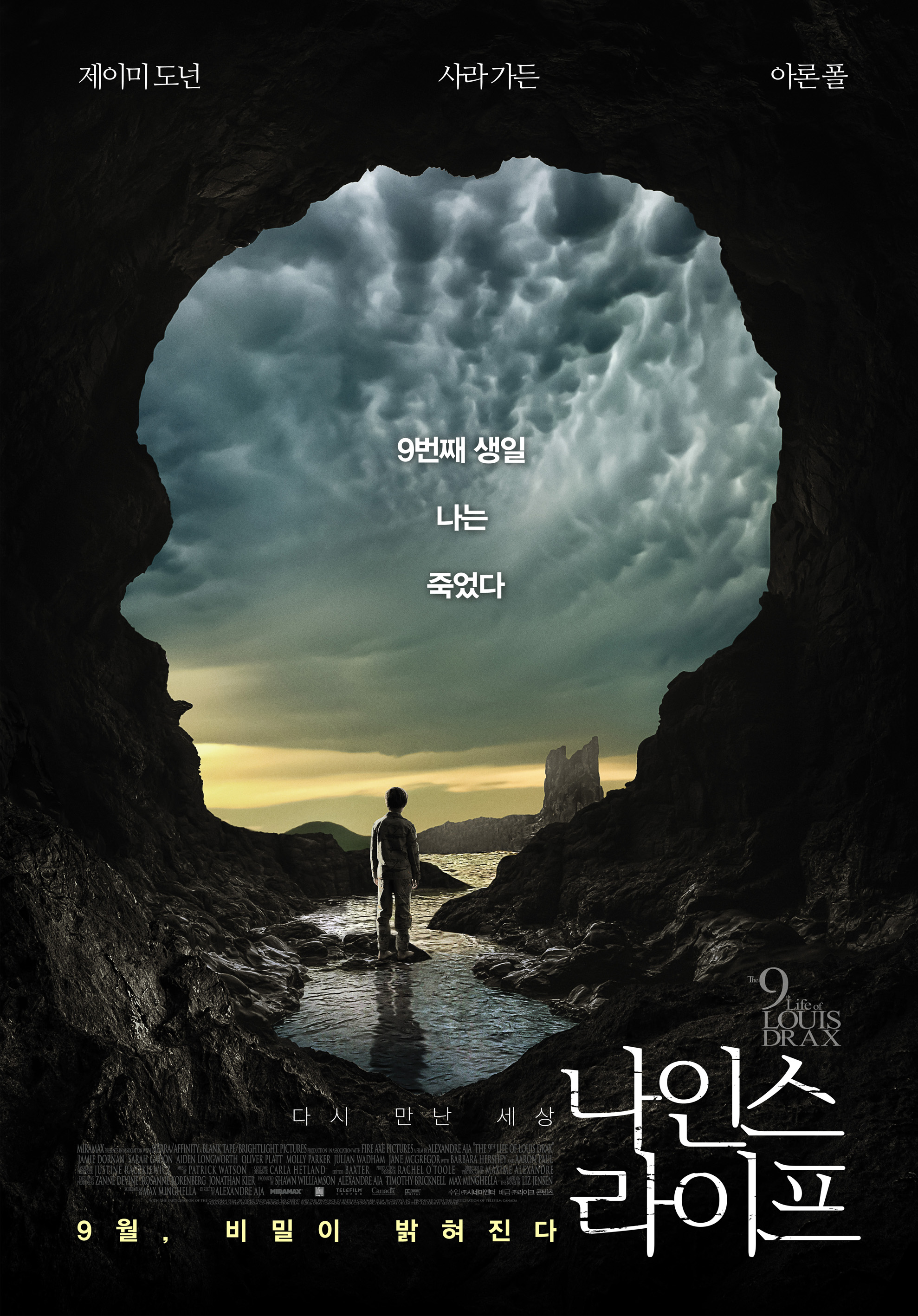 나인스 라이프 (The 9th Life of Louis Drax, 2017)